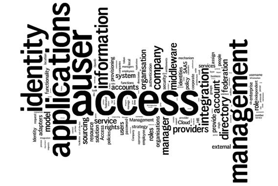 Identity management access management iam dynamicsfocus
